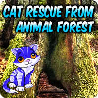Avm Cat Rescue From Animal Forest