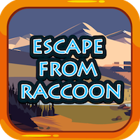 Escape from Raccoon