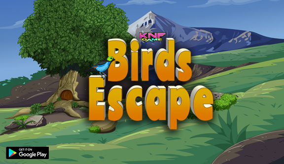 Knf Birds Escape - Escape Games