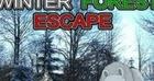 Mirchi Winter Forest Escape