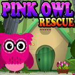Pink Owl Rescue Escape
