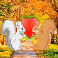 Save The squirrel Love - Escape Games