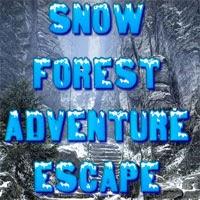 Snow Forest Adventure Escape