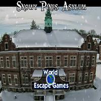 Snowy Pines Asylum