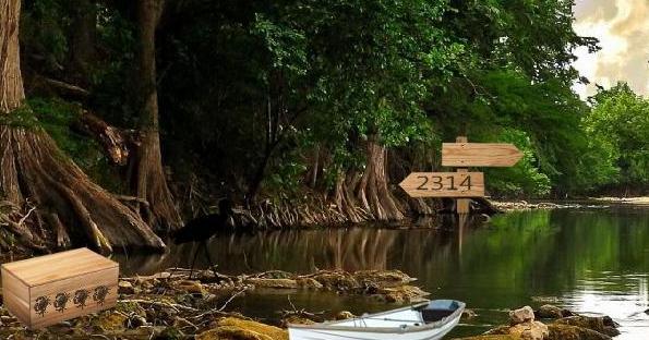 Swamp Forest Escape - Escape Games