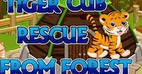 Tiger Cub Rescue From Forest Escape