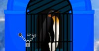 Wow Escape Game: Save the Penguin Escape