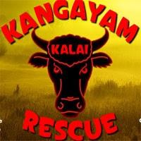 Wow Kangayam Kalai Rescue Escape
