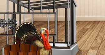 Yolk Make Evade Turkey